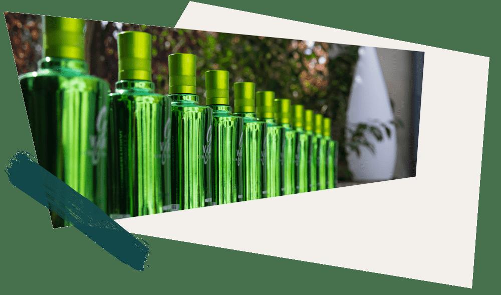 Le Raisin, Ingrédient noble du gin