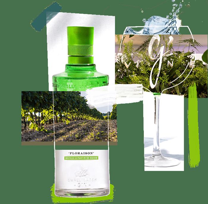 Le gin de France original