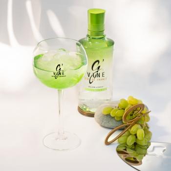 Cocktails gin sans sucre : de nombreuses recettes à découvrir