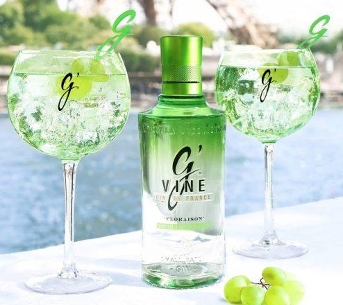 Comment choisir votre gin ?