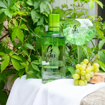 Quel gin choisir pour confectionner le meilleur des Gin Tonic ?