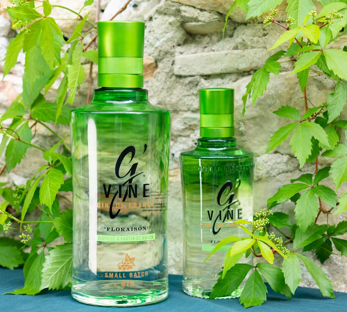Pourquoi le Gin G'Vine est vert ?